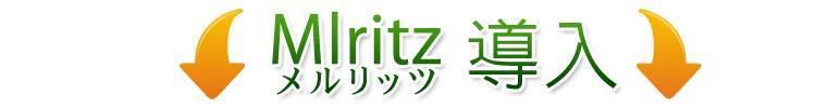 ショッピングカートをMlritz(メルリッツ)に変えると…